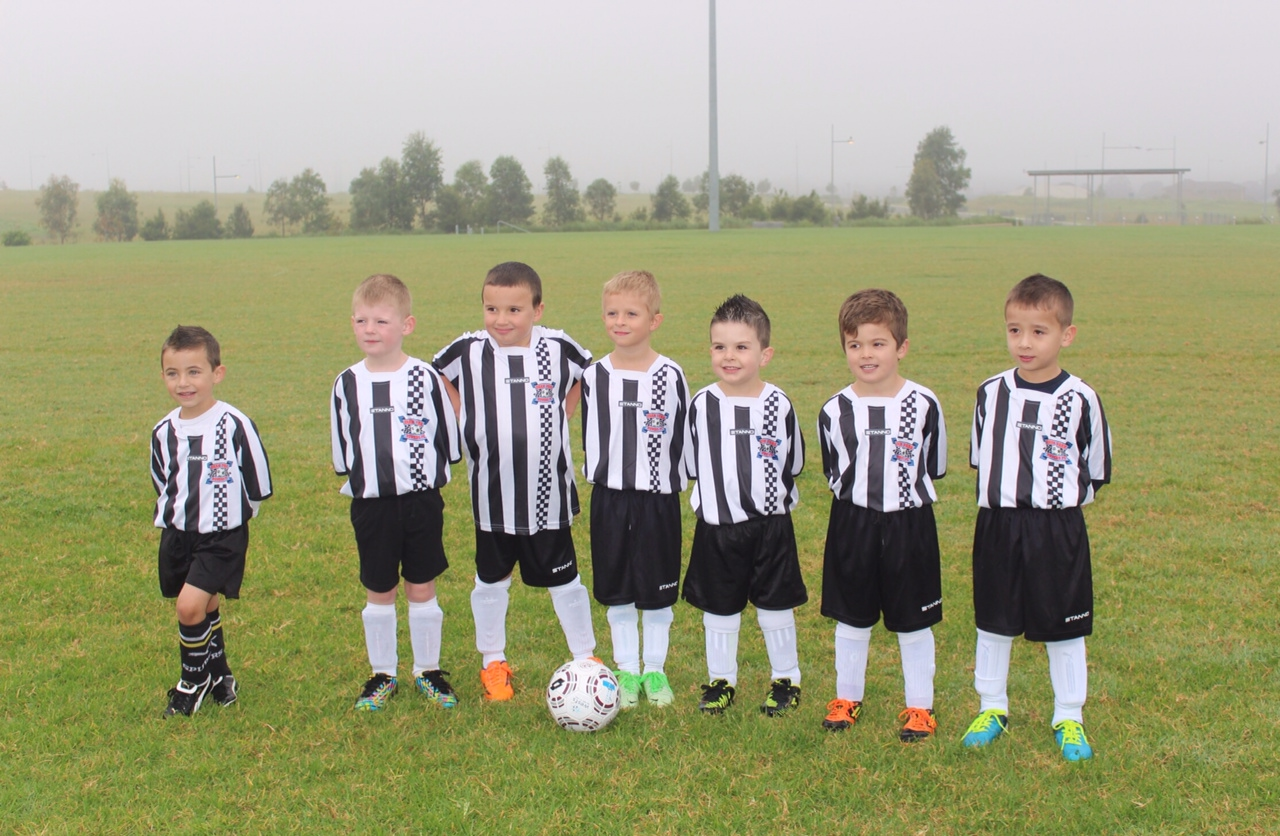 OP Rovers Under 6 2014